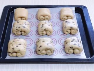 红豆日式咖啡面包卷,做好的面包卷,放入垫有油纸的烤盘中,并间隔距离!入烤箱进行二次发酵,发酵至明显变大!