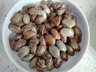 韭菜爱上花蛤,贝壳装盘摆设