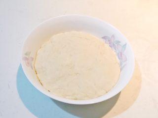 香肠苹果披萨,揉成光滑面团