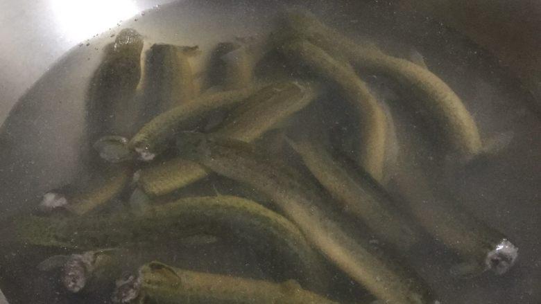耙泥鳅,将洗净的泥鳅放入锅中焯一下水,去除泥鳅的腥气。