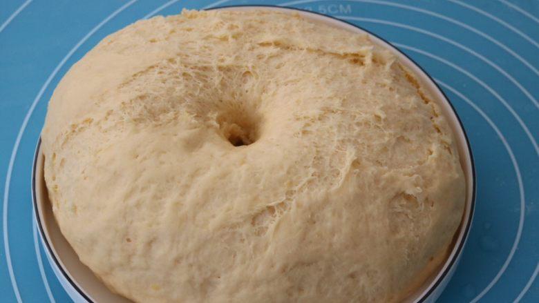 红薯小面包,2倍大后取出
