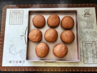 可可冰心面包,8、发酵好的面团,体积增大2倍,手指轻轻按压表面会缓慢回弹。