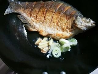 泡椒烧鳊鱼,放入大葱圈