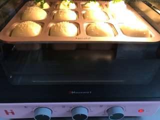 一次发酵餐包,把烤盘放入预热好180度的烤箱中,烤18分钟。