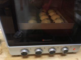 葡萄干早餐小面包,放入烤箱进行发酵