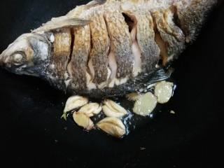 白酒香菜鳊鱼,煎出香味