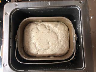 好吃到爆的杂粮萝卜肉包子,直接在面包机中启动发酵功能,发酵至二到三倍大,大约需要一个小时左右。