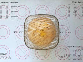 亚麻籽南瓜软欧包,8、发酵至2倍大。