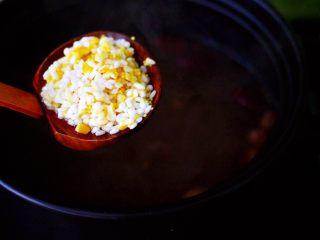 补血养胃的杂粮冰糖粥,这个时候就可以在沙锅里加入洗净的糯米,小米和玉米碴。