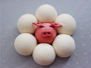 萌猪报春花样馒头,再把做好的猪耳朵粘到面团上即可。