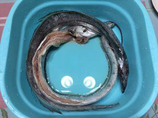 红烧带鱼,带鱼洗干净,去除内脏
