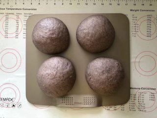 黑加仑黑米软欧包,15、发酵好的面团体积增大两倍左右。