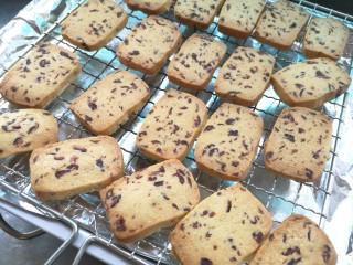 情人节之蔓越莓饼干,放凉