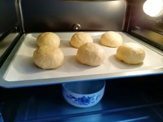 """淡奶油餐包,烤箱调至""""发酵""""功能,放入一碗热水,将面包生胚送入烤箱二次发酵。"""