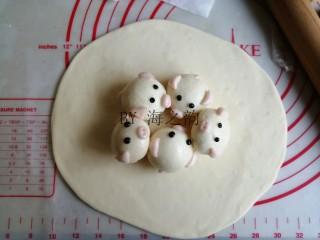 大吉大利母子猪馒头,将215克大面团揉片刻排气(因为做好这些步骤,面团已经发酵差不多有两倍大了),再擀成椭圆面皮,中间厚,四周薄一点,面皮不要擀太薄。将每只蒸好晾凉的小猪馒头刷一层玉米油,防粘,摆在面皮中间部位