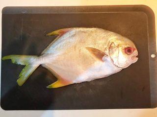 家常红烧金鲳鱼,把金鲳鱼清洗干净,去除内脏和鱼鳃