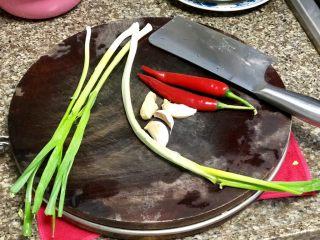碧叶琼枝烟火香➕鱼腥草蒜苗炒腊肉,其他配菜需要:蒜苗四根,小葱一根,蒜三瓣,红辣椒两根,姜一小块