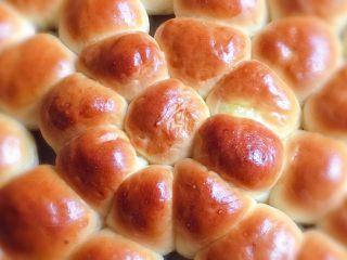 奶黄小面包,漂亮的颜色和造型看看都心动。
