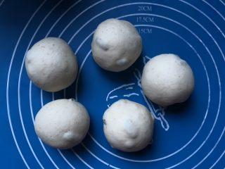葡萄干肉桂胚芽贝果,面团揉好后,均匀分成五份,每一份都滚圆。