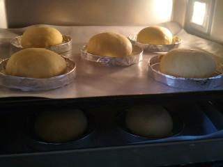 布里欧修汉堡面包🍔,发酵一小时,成原来体积的两倍大