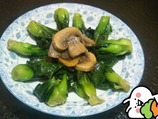 菜心炒蘑菇✨🍵