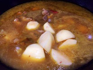 #猪年#排骨土豆炖豆角,放入土豆块