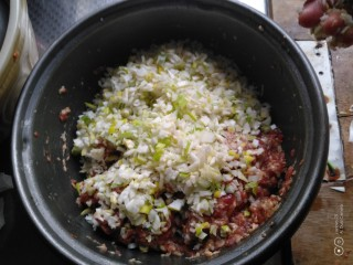 羊肉大葱饺子,放入肉中。
