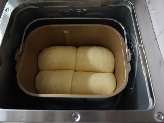 面包机版炼奶面包,发酵好的面包胚有七八分满了,在表面刷上全蛋液