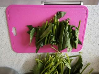 菠菜拌花生,菠菜切四段,方便搅拌和夹取