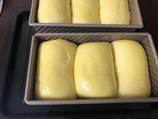 超柔软波兰种吐司,发酵好了之后在表面刷一层鸡蛋液。