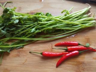 白萝卜香辣凉拌菜   新文美食,香菜洗干净,小米辣椒洗干净。