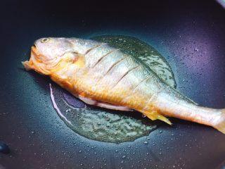茄汁黄花鱼,把黄花鱼放入煎至