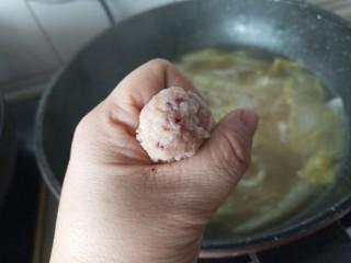 白菜肉丸炖粉条,肉泥团成丸子