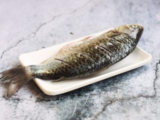 鲫鱼炖豆腐,将<a style='color:red;display:inline-block;' href='/shicai/ 377/'>鲫鱼</a>刮鳞、去除内脏,清洗干净,沥干水分,在鱼的两面用到划几刀,方便入味。
