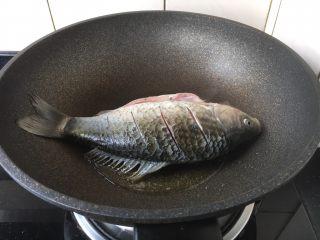 鲫鱼炖豆腐,锅烧热后放入2勺的食用油,油温五、六成热时放入鲫鱼。