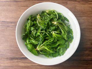 荠菜杂烩汤,首先把荠菜清洗干净,放入碗里,加入一勺盐,浸泡30分钟。
