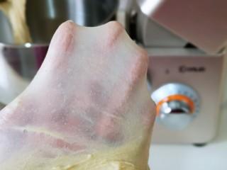 全麦熔岩芝士面包,揉到不容易破的手套膜,可以进行发酵了。