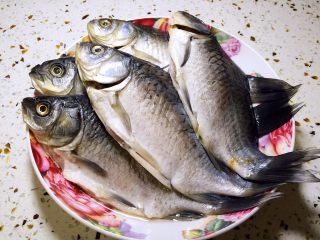 鱼罐头,鲫鱼去鳞去腮去内脏,洗净