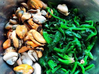 菠菜拌海虹,菠菜切成小段和海虹肉肉一起放入容器中