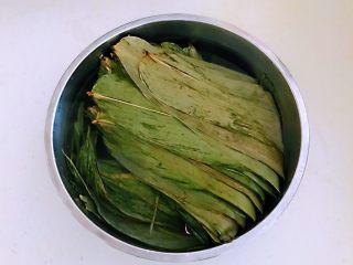 蜜豆糯米粽子,把瓶清洗干净的粽子叶用冷水浸泡12小时