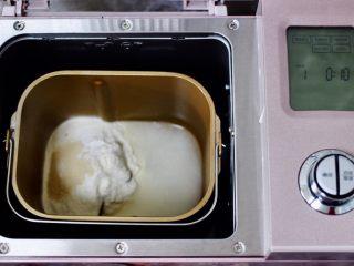 大葱猪肉发面包,把中筋面粉和酵母称重后,倒入东菱面包机里,再加入称重的温水,启动面包机的和面程序开始和面。
