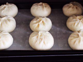 大葱猪肉发面包,白白胖胖的大葱猪肉发面包子出锅咯。