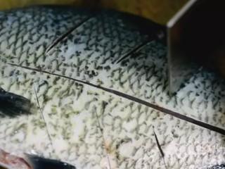 清蒸扁鱼最好吃的做法,味道鲜美,口感鲜嫩,鱼处理干净,鱼身两面打兰草花刀