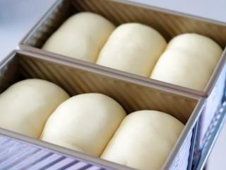 超绵软吐司(一次发酵),放入吐司盒发酵至八九分满。