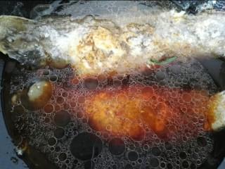 红烧舌鳎鱼,放入小半锅清水开始炖鱼