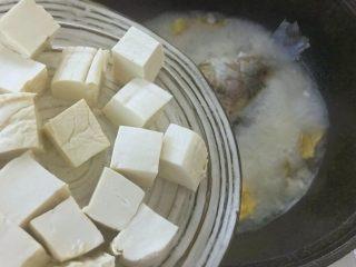 汤白鱼鲜好美味,鲫鱼豆腐汤,6.放入切小块的嫩豆腐。