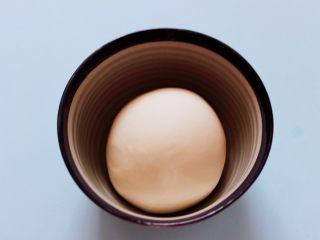 蘑菇韭菜饺子,和好的面团用手揉圆后静置20分钟。
