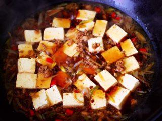 肉末青蒜烩豆腐,把提前焯水的豆腐放入锅中。