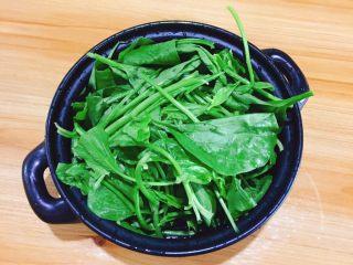 凉拌菠菜,菠菜去根洗净..一棵弄两段,直接用手弄