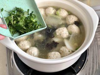 点翠清汤白玉丸➕木耳冬瓜丸子汤,关火,点缀少许香菜碎,即可上桌享用了😄
